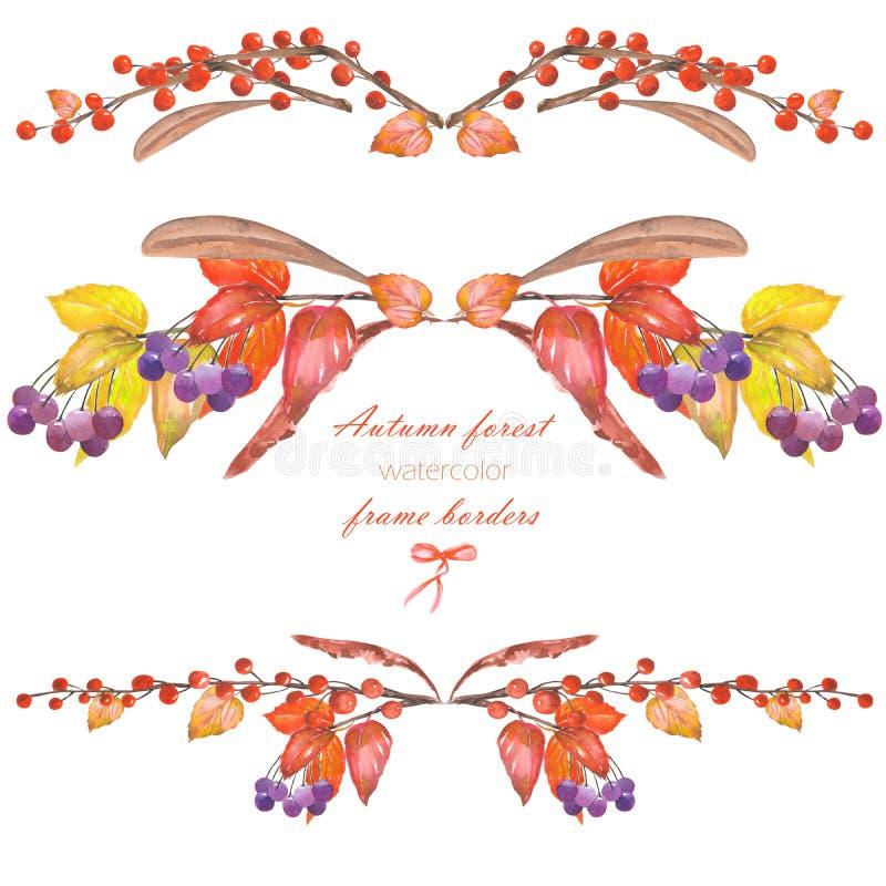 Capítulo las fronteras, composiciones florales con las hojas de otoño rojas de la acuarela en las ramas y las bayas del viburnum stock de ilustración