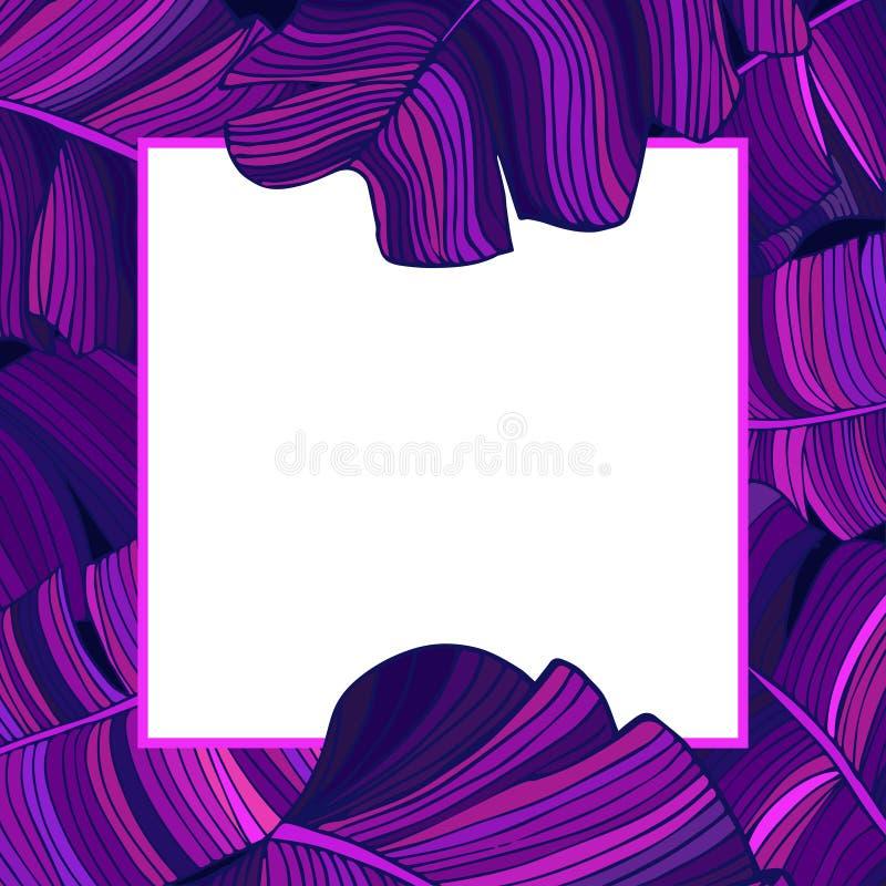 Capítulo para el texto con un fondo blanco de hojas púrpuras brillantes de un árbol de plátano Idea para el cartel, postal, aviad libre illustration