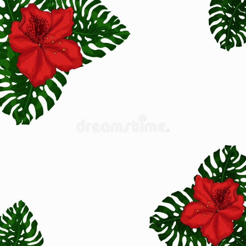 Capítulo para el texto de las hojas exóticas, verdes de las flores rojas de Monstera y de la azalea Idea para el cartel, postal,  stock de ilustración