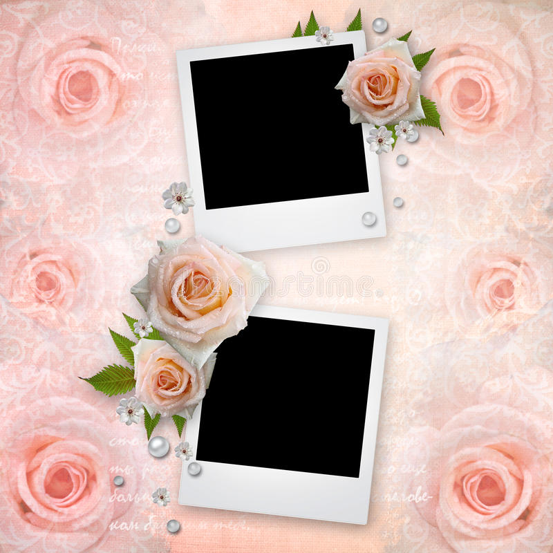 Capítulos de la foto con las rosas rosadas stock de ilustración