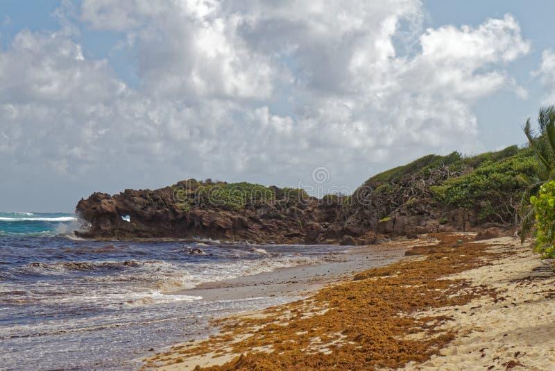Cap de Macre et roche de grosse d'anse - trou de coeur dans la roche - Le Marin - Martinique image libre de droits