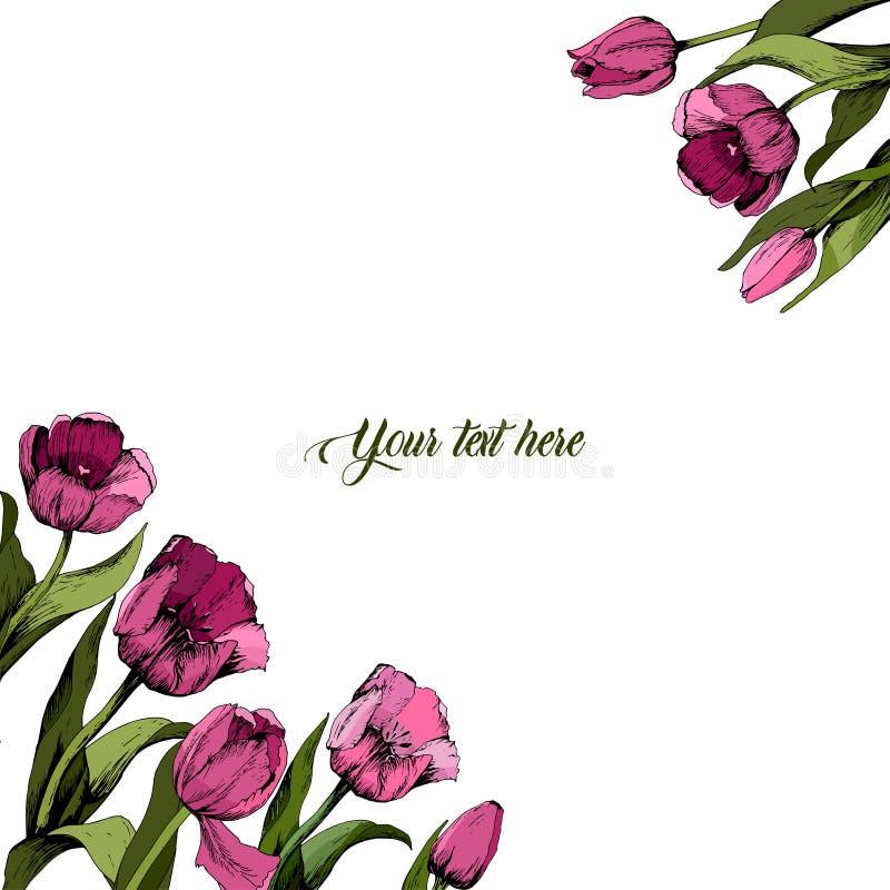 Cap?tulo con los tulipanes rosados coloreados cartel Humor del resorte Ilustraci?n del vector stock de ilustración