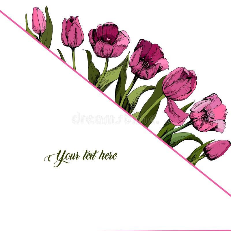 Cap?tulo con los tulipanes rosados coloreados cartel Humor del resorte Ilustraci?n del vector ilustración del vector