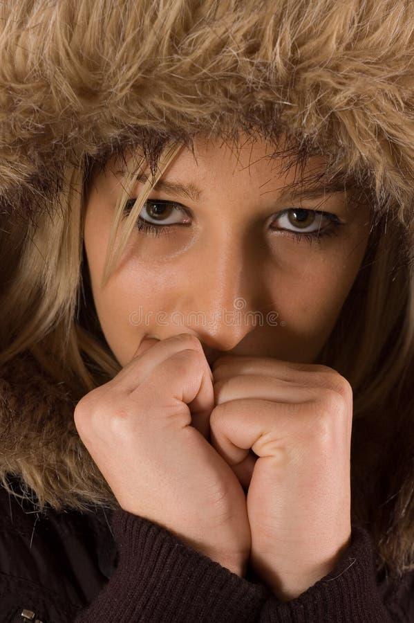 Capa do inverno fotos de stock royalty free