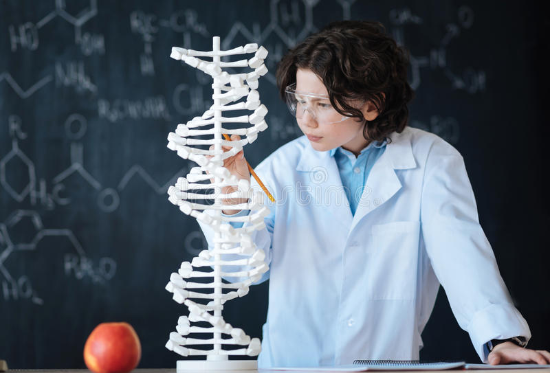 Capable young researcher exploring genomics in the laboratory royalty free stock photo