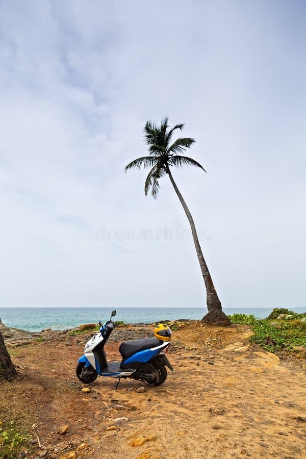 Capacete no velomotor Praia tropical selvagem da costa do oceano Ramos da palma ou folhas de palmeira verdes do coco imagem de stock royalty free