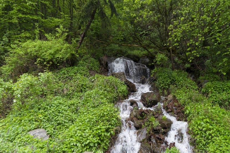 Capalna罗马尼亚小瀑布村庄  免版税库存照片