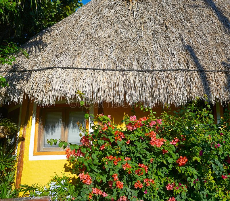 Capanna caraibica variopinta di palapa dell'isola di Holbox immagine stock libera da diritti
