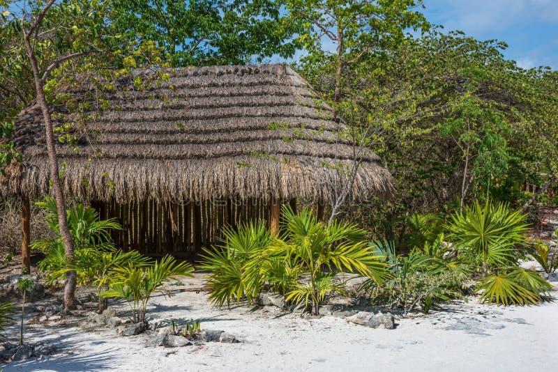 Download Capanna della giungla fotografia stock. Immagine di capanna - 56891724