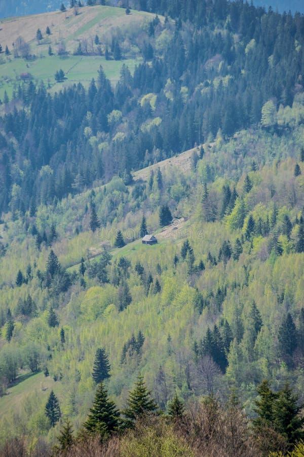 Capanna sola in montagne ucraine immagine stock