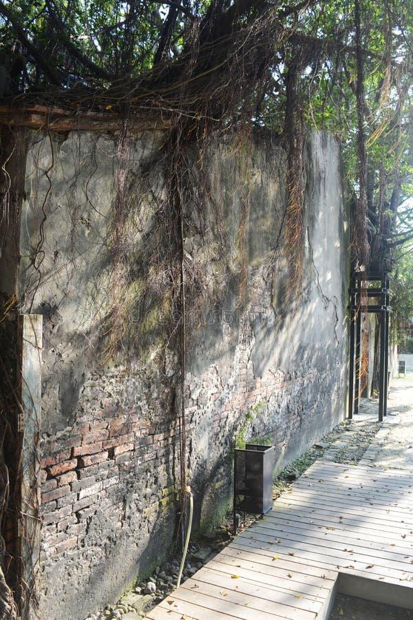 Capanna sugli'alberi di Anping, Taiwan fotografie stock