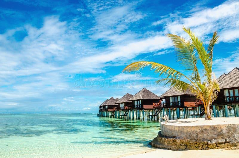 Capanne di legno esotiche sull'acqua, Maldive fotografia stock libera da diritti