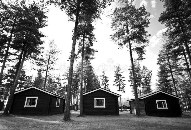 Capanne o cabine in foresta fotografie stock