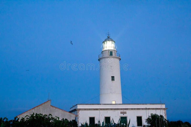 Cape barbaria lighthouse sunset lighting. In Mediterranean Formentera island stock photo