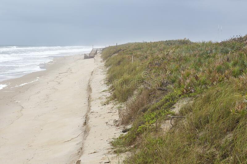 Cape Canaveral National Seashore, Brevard County, Florida. Scenic view of vegetation, sand and ocean waves at Cape Canaveral National Seashore, located in stock photo