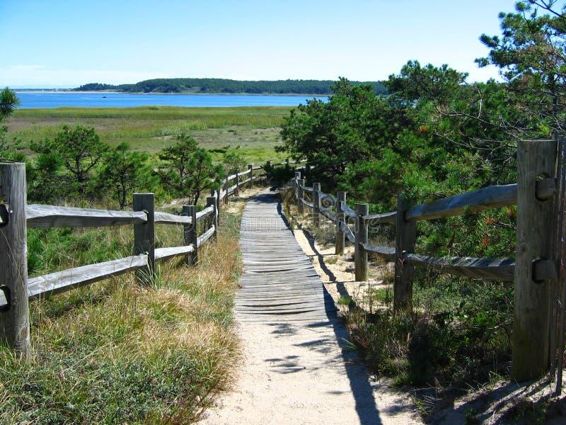 Cape Cod Beach Boardwalk 02 royalty free stock image