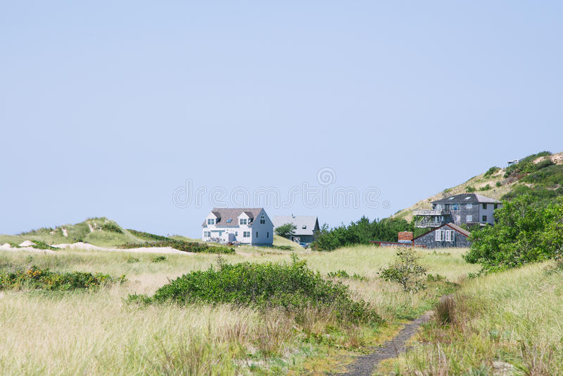 Cape Cod-Dünen lizenzfreies stockfoto