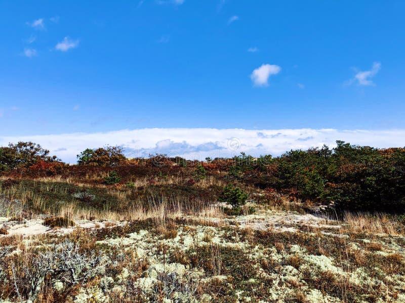 The Cape Cod National Seashore sand dunes stock photography