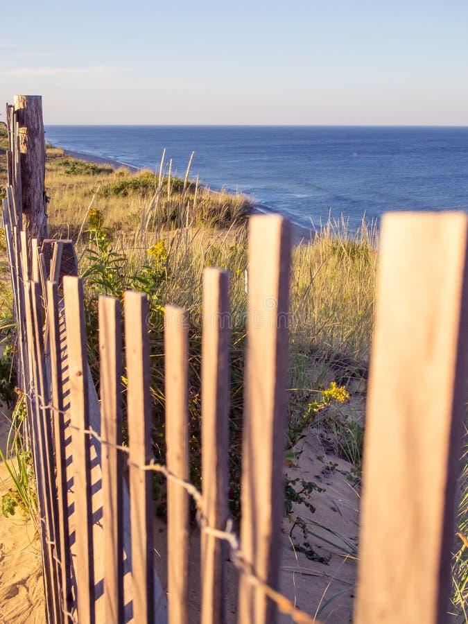 Cape Cod nationella kustklippor på Goldenhour fotografering för bildbyråer