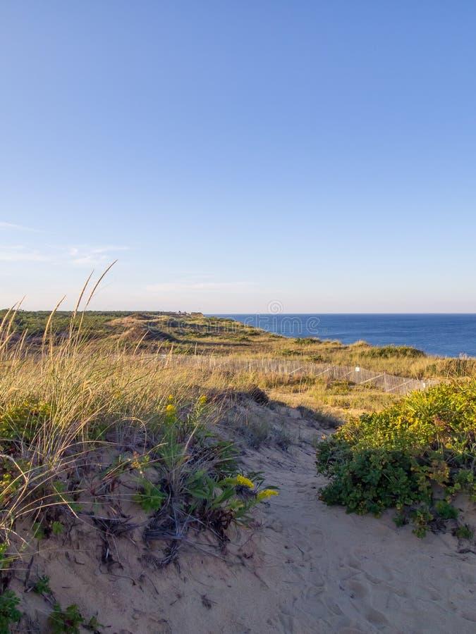 Cape Cod nationella kustklippor på Goldenhour royaltyfria foton