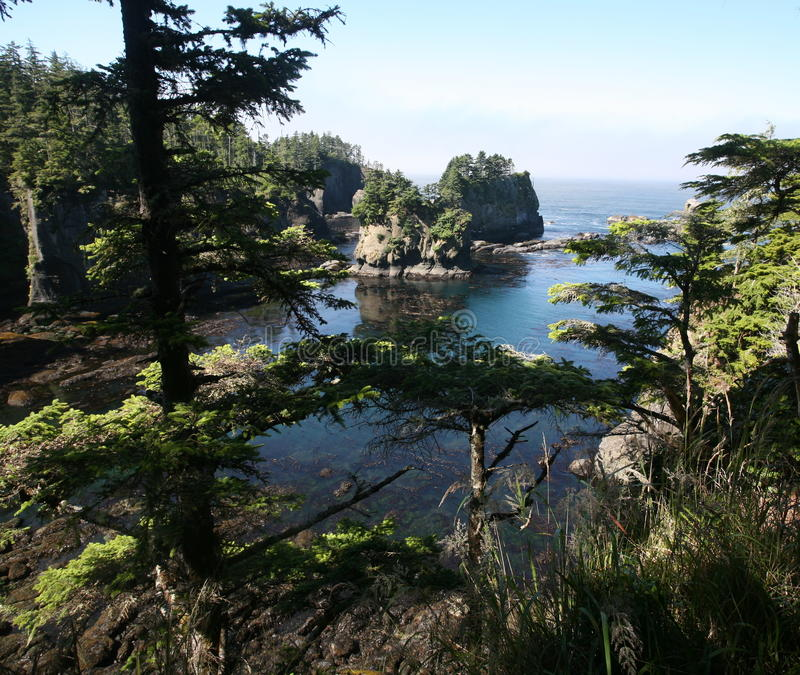 Cape Flattery in Olympic national park royalty free stock image