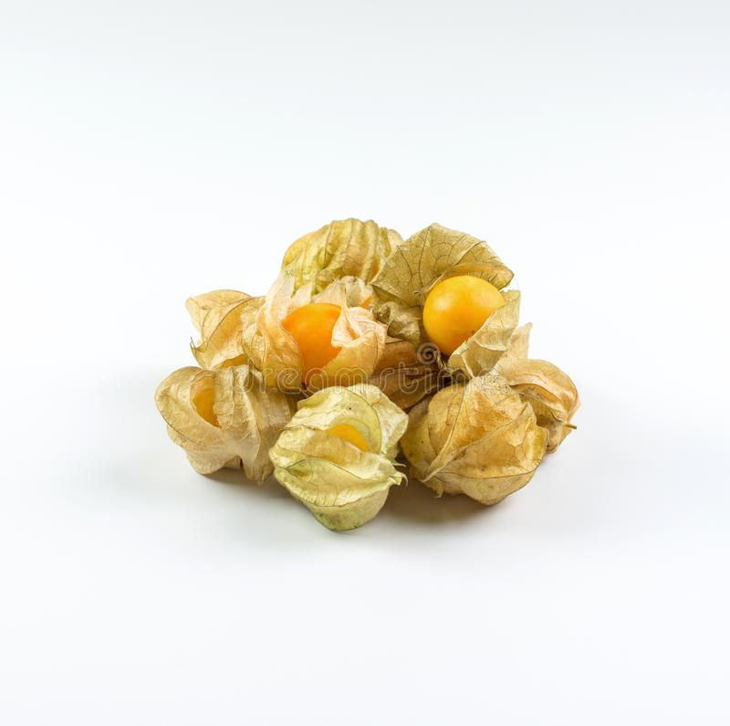 Cape gooseberry physalis isolated on white background. Cape gooseb isolated on white background royalty free stock image