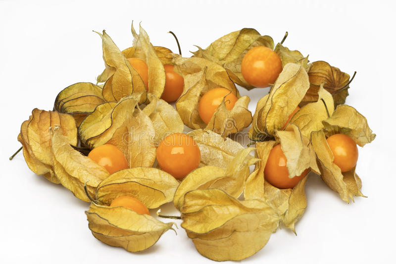 Cape gooseberry (physalis) royalty free stock photo