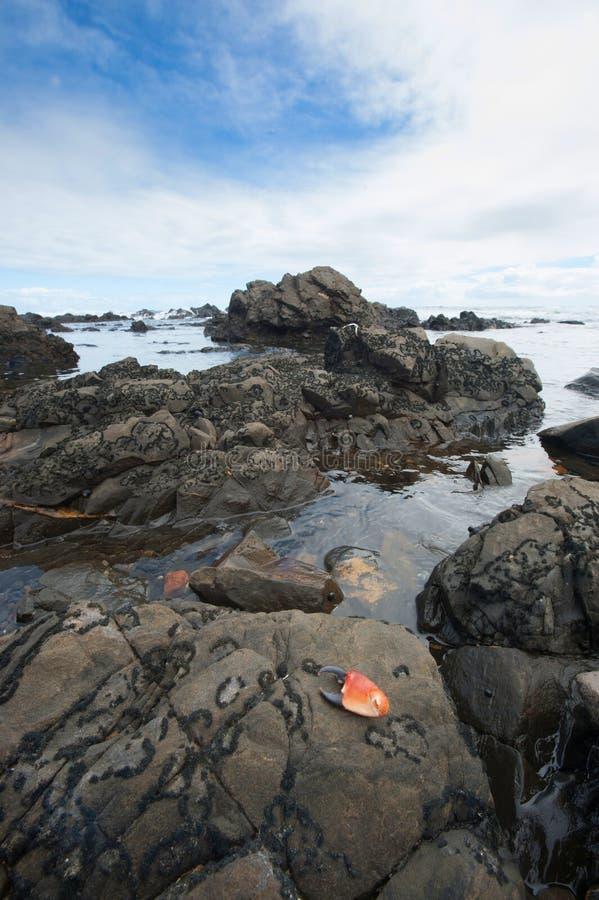 Cape Jervis Shoreline Stock Photography