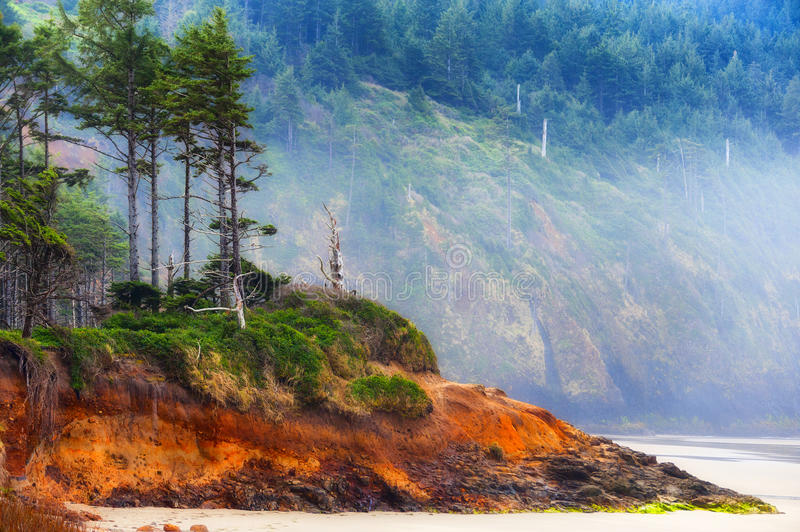 Cape Lookout beach on Oregon Coast royalty free stock image