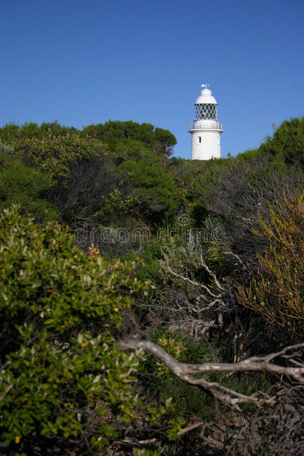 Cape Naturaliste Lighthouse. Seaside vegetation frames Cape Naturaliste lighthouse. Western Australia royalty free stock images