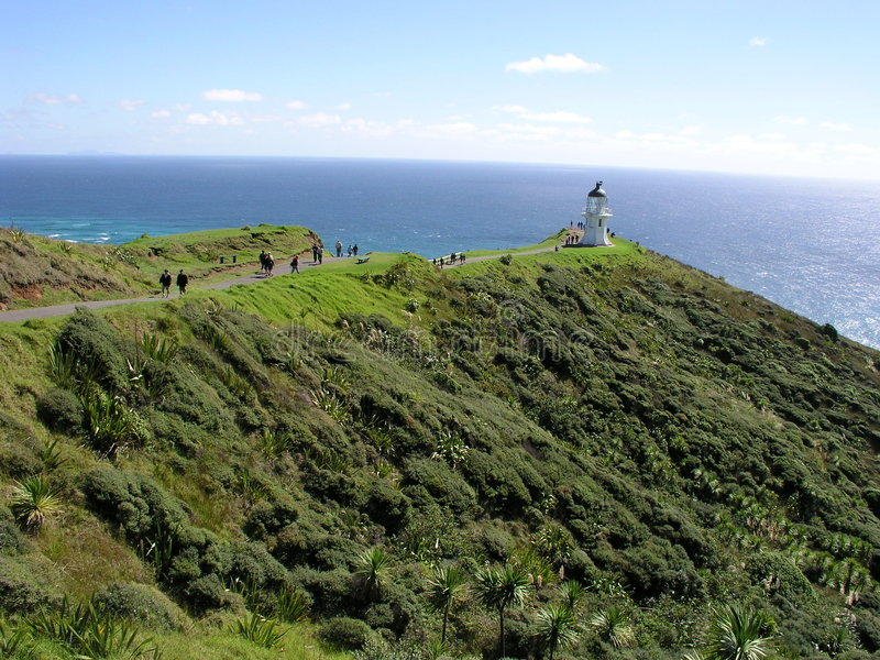 Download Cape Reinga Lighthouse stock photo. Image of plants, pacific - 160752