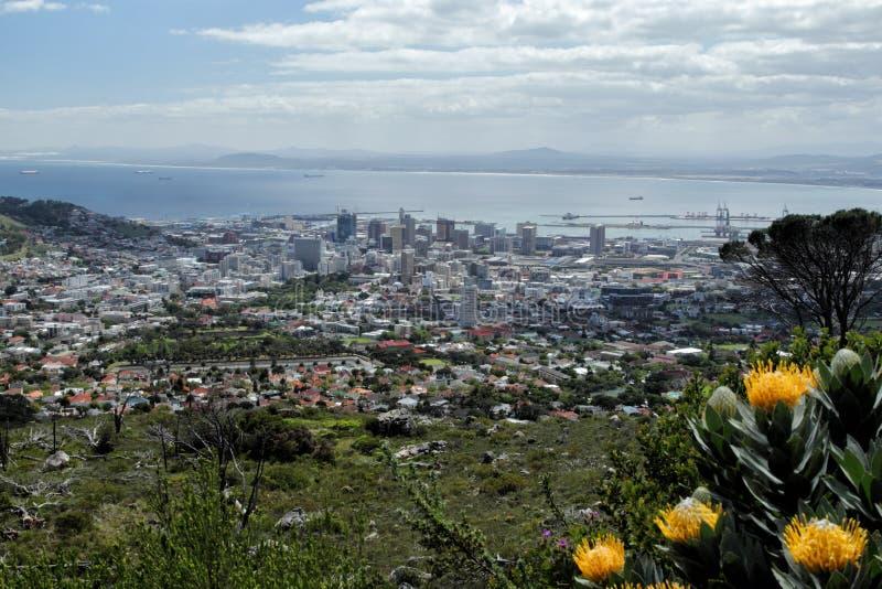 Cape Town royaltyfri foto