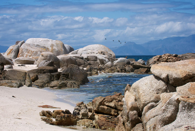 Cape Town Beach stock images