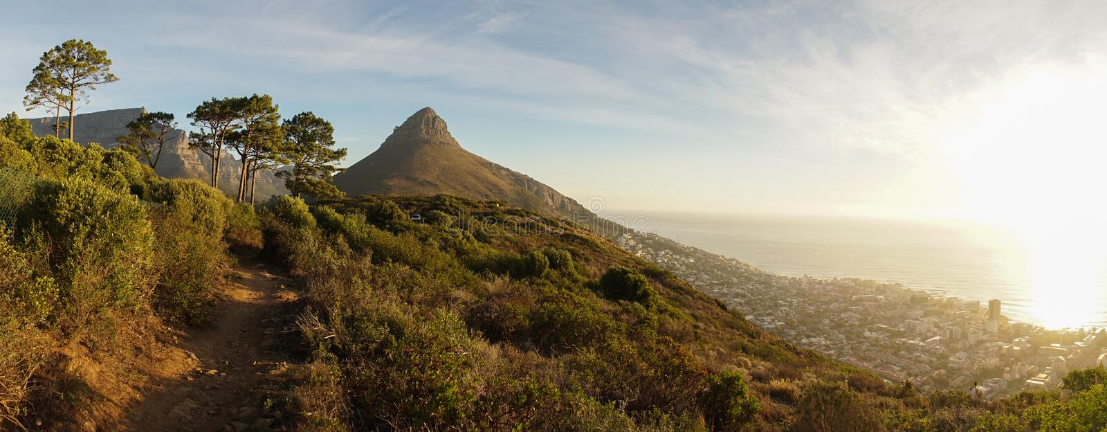 Cape Town Table Mountains in South Africa. Trees and nice light royalty free stock image