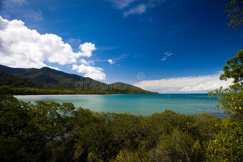 Cape Tribulation. Tropical North Queensland, Australia stock images