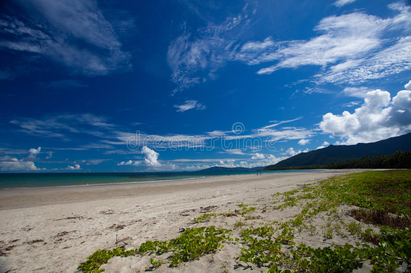 Cape Tribulation. Tropical North Queensland, Australia royalty free stock photo