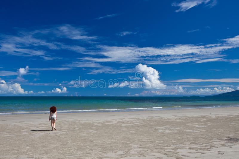 Cape Tribulation. Tropical North Queensland, Australia stock photography