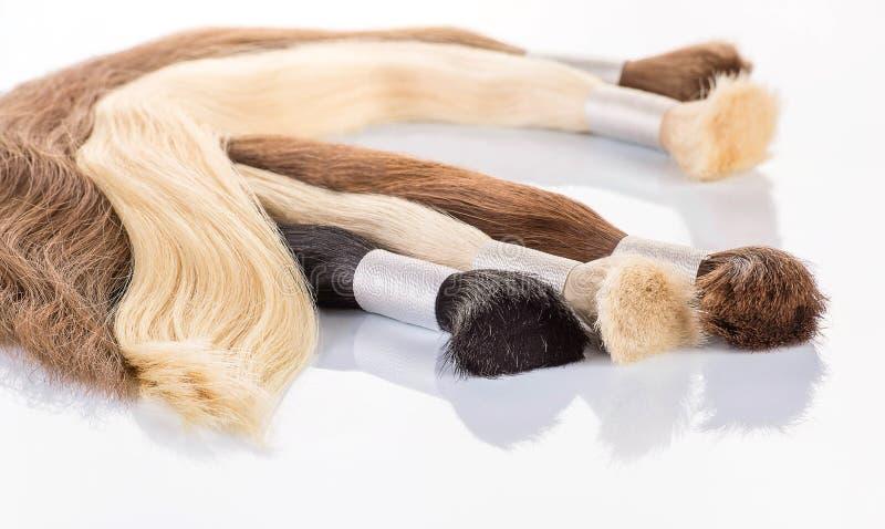 Capelli colorati falsi su fondo bianco Capelli per l'estensione dei capelli fotografia stock libera da diritti