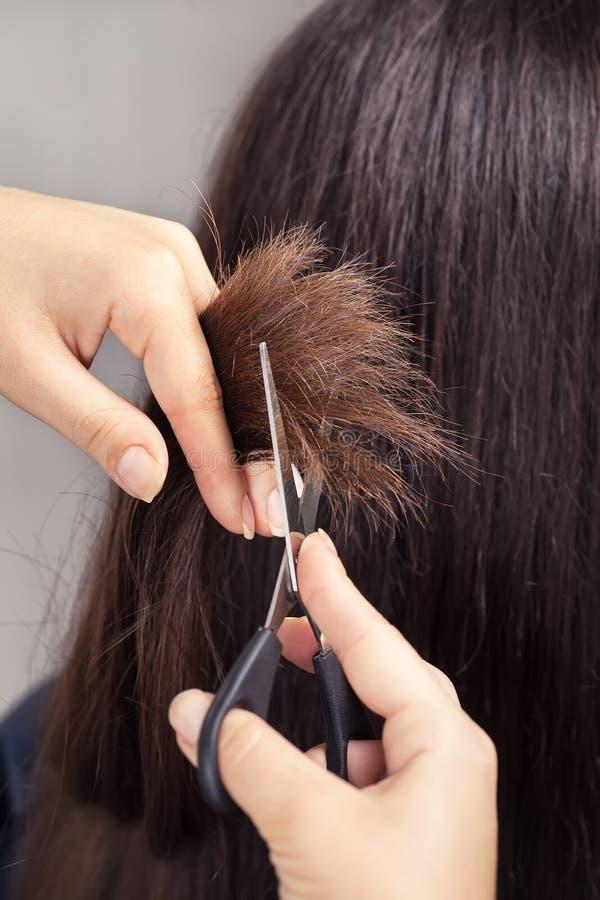 Capelli della guarnizione del parrucchiere con le forbici fotografie stock libere da diritti