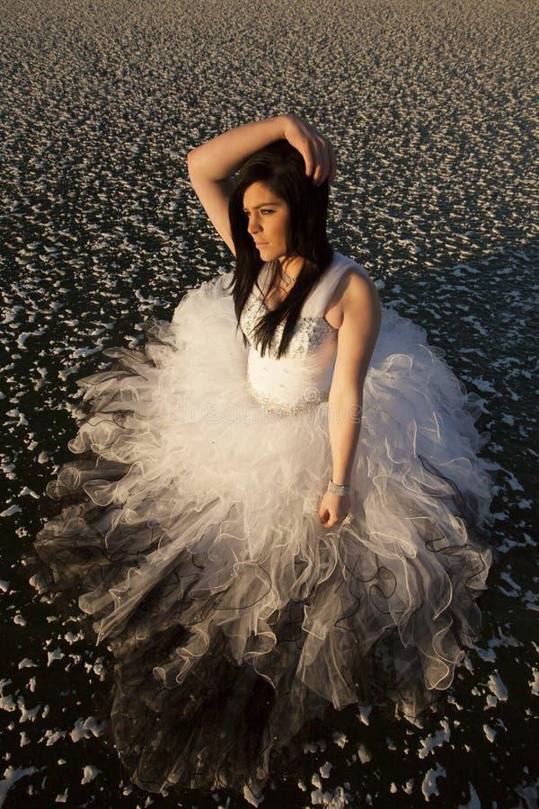 Capelli della mano di vista superiore del ghiaccio del vestito convenzionale dalla donna immagine stock libera da diritti