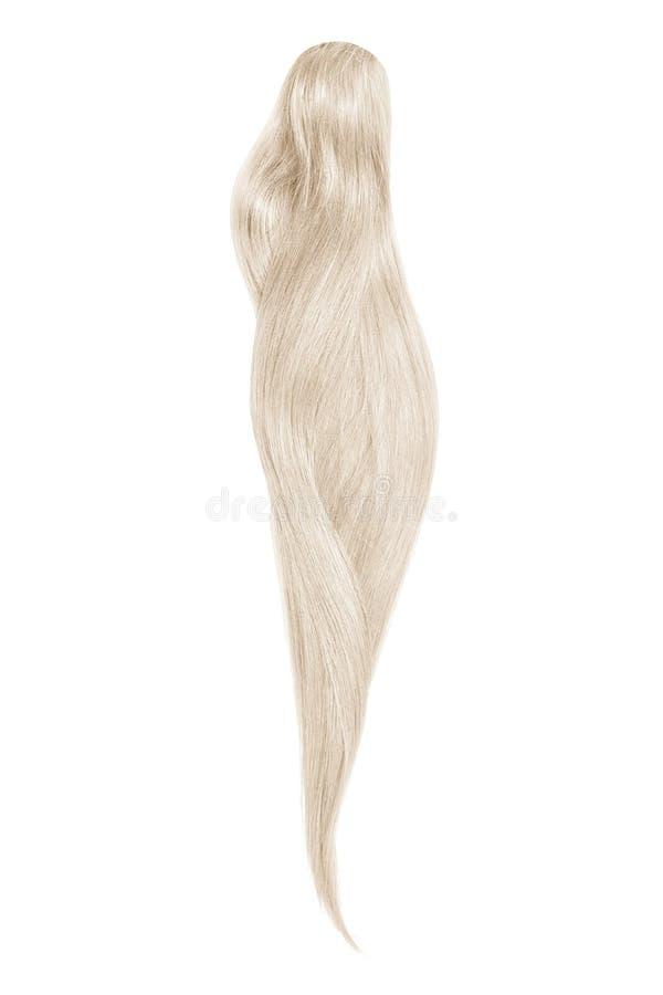 Capelli grigi, isolati su fondo bianco Bella coda di cavallo lunga fotografia stock