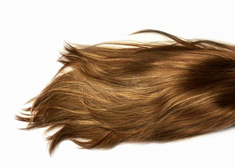 Capelli lunghi umani sani brillanti di punto culminante naturale Estensione e parrucca fotografia stock libera da diritti