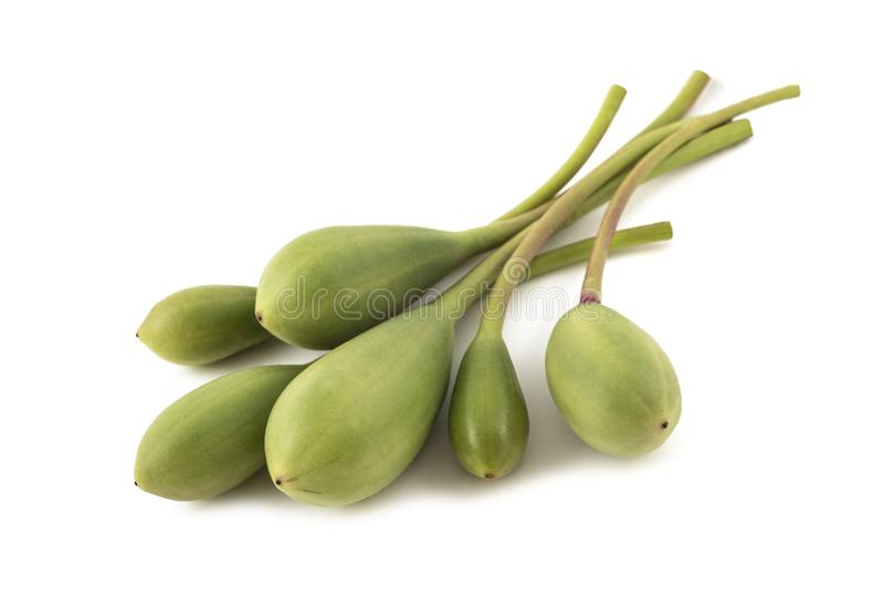 Caper berries. Isolated on white background stock photos