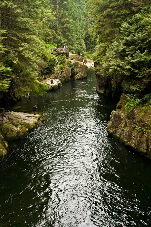 Capilano Fluss, Vancouver, Kanada lizenzfreies stockfoto