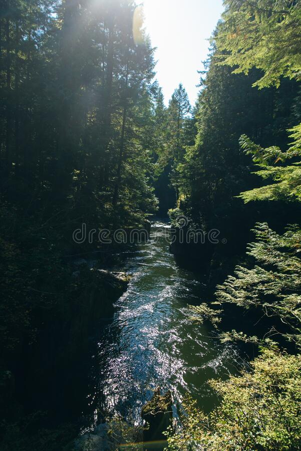 Capilano River, Vancouver, Canada, running through a lush, wooded valley, with mountains in the background.  royalty free stock photography