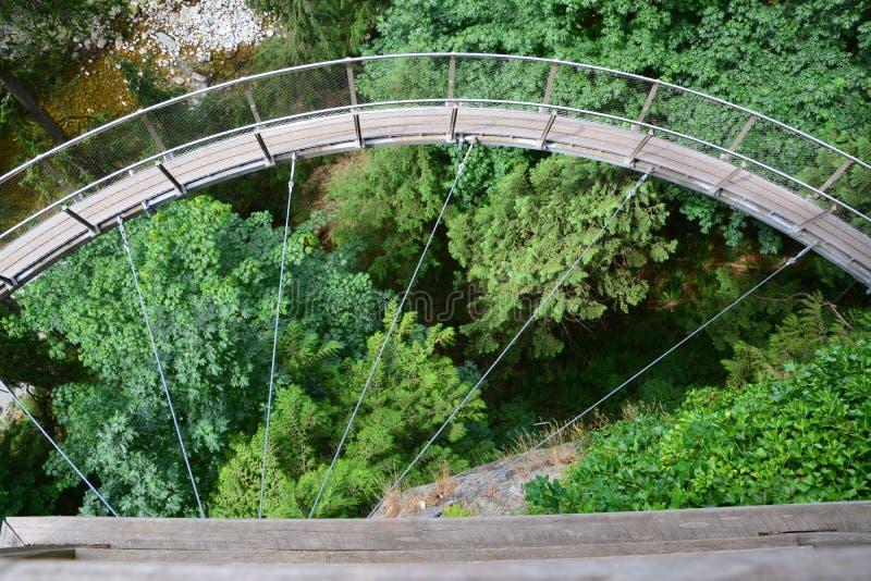 Capilano Suspension Bridge Park Vancouver. Bidge in Capilano Suspension bridge Park royalty free stock image
