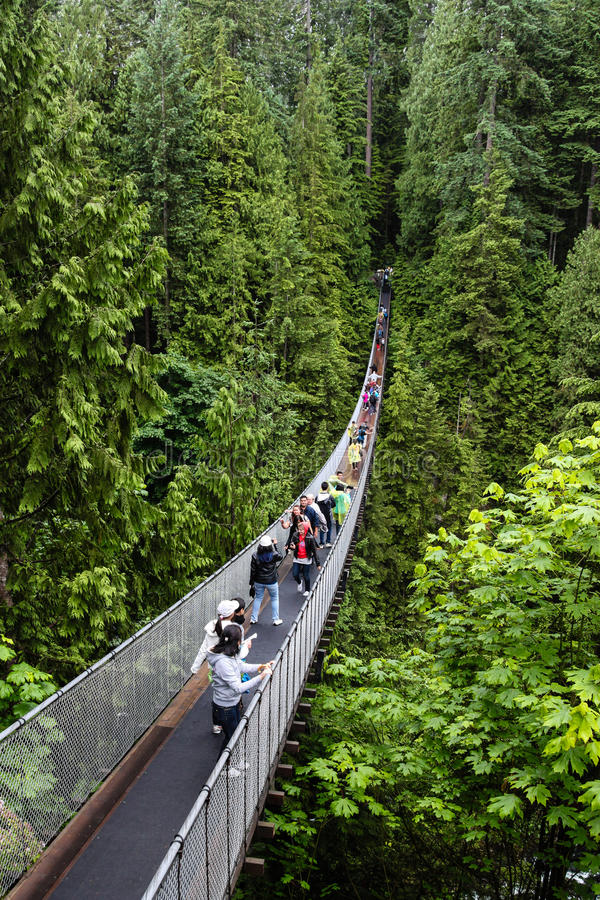 Capilano zawieszenia most w Vancouver fotografia royalty free