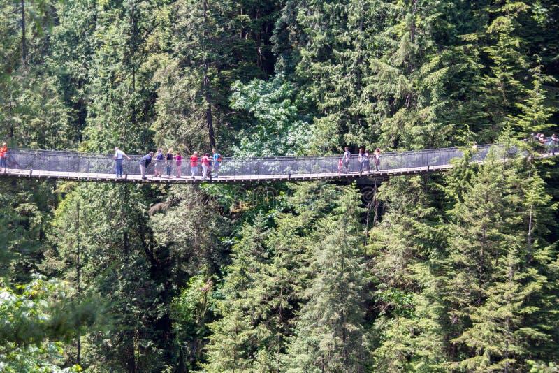 Capilano zawieszenia mostu park, Vancouver, Kanada fotografia stock