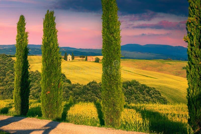 Capilla de Vitaleta en los campos de la colina y de grano, Toscana, Italia foto de archivo