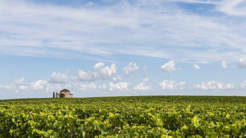 Capilla en santo-Estephe del vinyard fotografía de archivo libre de regalías